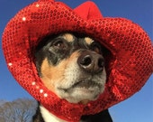 Valentines Day hat for dogs and cats