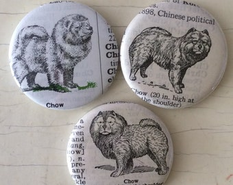 Chow Vintage Dictionary Illustration Magnet Set of 3