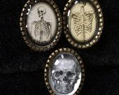 Skeleton- Adjustable Rings