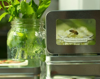 Bee Friendly Garden Seed Gift Set
