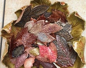 Fall SALE SALE SALE Clay Leaf Bowl with Leaves