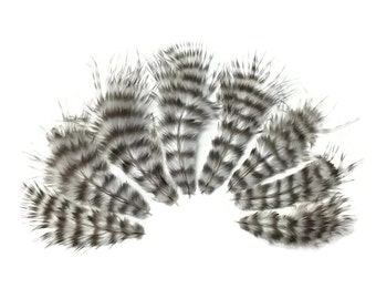 Feathers, 1 pack - NATURAL Grizzly Rooster Fluff Craft Feathers : 641