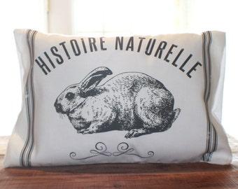 Spring Hop Pillow