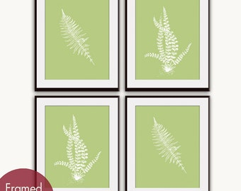 Ferns Garden Botanical Prints (Series D) Set of 4- Art Prints (Featured in Lime Rickey) AS featured in BHG
