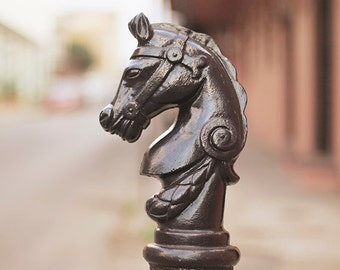 Horse Decor, New Orleans Wall Art, Hitching Post, Fine Art Photography, French Quarter Print, Affordable Home Decor, 8x10, 11x14, 16x20