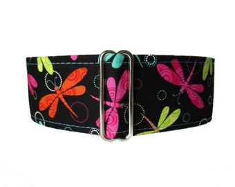 1.5 inch Martingale Collar, Dragonfly Martingale Dog Collar, Dragonfly Dog Collar, Dog Collars Canada, Martingale Collars Canada