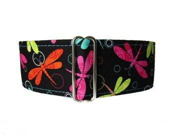 Dragonfly Martingale Dog Collar, Dragonfly Dog Collar, 2 inch Martingale Collar, Dog Collars Canada, Martingale Collars Canada