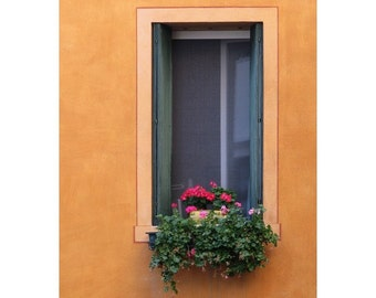 """Fine Art Color Architecture Photography of Window - """"Geraniums in Yellow Window in Treviso"""" (Italy)"""
