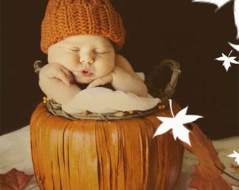 Summer SALE Pumpkin beanie