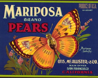 1930s Mariposa Pear Pears Crate Label Butterfly San Francisco CA