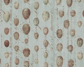 Flora & Fauna - Speckled Eggs in Blue by Brenda Walton for Blend Fabrics