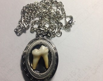 Real Tooth Locket Necklace