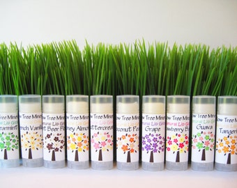 All Natural Delicious Lip Gloss - Summer Flavors
