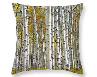 Birch Tree Grove in Autumn No.0641 nature photography novelty throw pillow Home Décor cushion cover