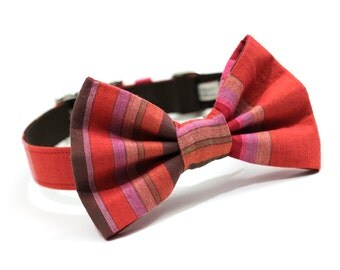 Dog Collar and Bow tie, Bowtie Dog Collar, Dog Collar with metal buckle- Berry Stripes
