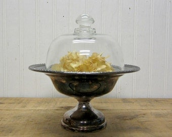 Vintage Silver Plate Compote with Glass Dome Cloche Display