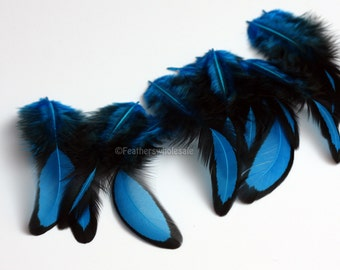 Small Blue Feathers Blue Laced Feather Crafting Plumes Blue Craft Feathers Black and Blue Narrow Tapered Bright Blue Feathers 10 PCS