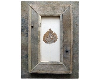Aspen 'The Wise'-- Leaf Framed in Aged Pine