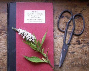 Vintage 'More Green Fingers' Gardening Poetry Book - Reginald Arkell @ 1938