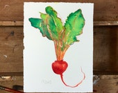 Red Beet.  An original signed vegetable fine art watercolor painting