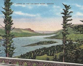1930s Oregon Postcard  Columbia River Gorge