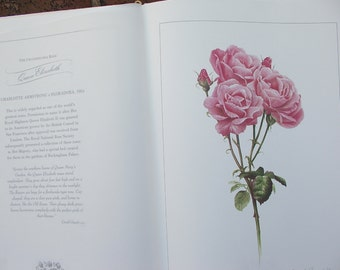 LARGE Vintage The Royal Roses of London book, Queen Mary's Garden, English roses book, Watercolor art prints unframed, Pink red roses