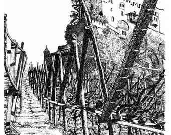 The Vineyards at Brunnenburg, 8x10 print