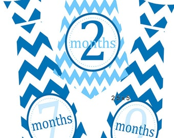 Neck Ties Onesie 1 -12 month stickers,Neck Ties Stickers Baby Shower gift,Monthly onesie stickers,Stickers, Baby Stickers,. Set of 14,