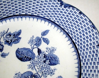 Antique Cauldon England Blue and White Botanical Transferware Dinner Plate RUSKIN Pattern Basketweave Border
