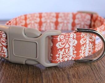 Orange Damask Dog Collar