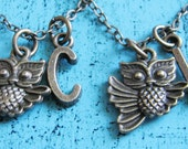 friendship necklace set of 2, best friend gift, sister, best friend necklace, personalized gift, small owl necklace, bff, friend jewelry