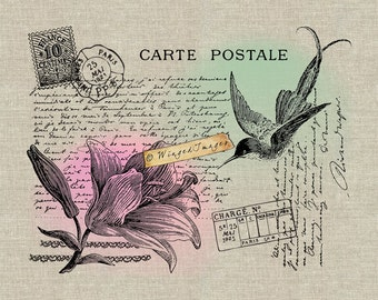 Vintage French Hummingbird Postcard Instant Download Digital Image No381 Iron-On Transfer to Fabric (burlap linen) Paper Prints (cards tags)