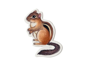 Chipmunk Wildlife Magnet / Nature Art / Refrigerator Magnet / Office Magnet / Party Favor / Small Gift