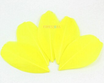 50 Pieces Yellow Feather 5-8cm (YM87)