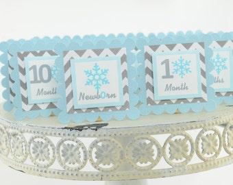 Snowflake 12 Month Photo Banner, First Year Photo Banner, First Year Banner, Winter Wonderland Photo Banner, L. blue and Grey, c-1151
