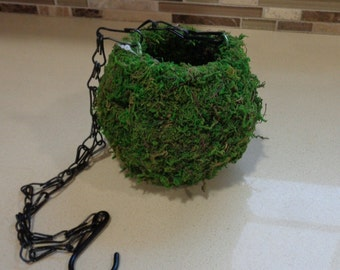 """4"""" Moss Ball Hanging Planter With Chain"""