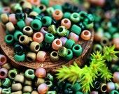 10g Toho Seed Beads Mix - Woodland Spirit - MayaHoney Special Mix, 8/0 size, Dark Green, Topaz - S1028
