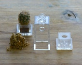 1 - Rectangle Shape Miniature Terrarium Container Kit Grow Your Own Live Plant Charm Green House Pendant Terrarium Supplies Jewelry Supplies