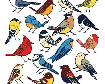 North American Birds art print, 8.5 by 8.5 illustration, birds print, Canadian Birds