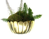 Large Brass Scalloped Wall Pocket Planter Hanging Garden Kitchen Accessories Patio Decor