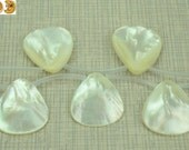 10 pcs of MOP,mother of pearl smooth top drilled fan beads 25x28 mm