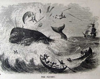 1855 WHALING, 6 Antique Engravings: Absolutely Incredible Illustrations, Sailing Ships & Whales with Extensive Text