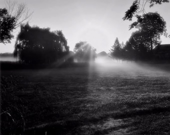 Fall Morning (black and white version)