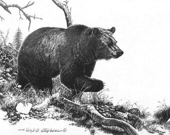 On The Move, black bear artwork of a bear running thru the woods. Bear artwork, pencil drawing, wildlife drawing of a bear