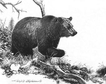 On The Move, black bear artwork of a bear running thru the woods. Bear artwork, pencil drawing, wildlife drawing of a bear