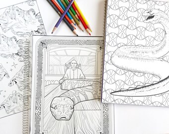 Harry Potter adult coloring book notebook with Voldemort, a Basilisk, or  dementors