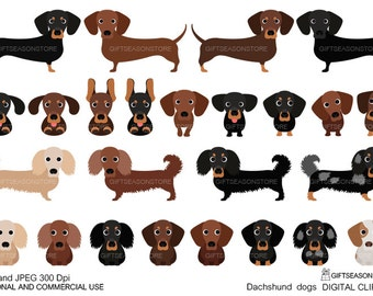 dachshund dogs digital clip art for Personal and Commercial use - INSTANT DOWNLOAD