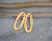 Brass Feather Oval Earrings