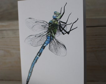 Blank Dragonfly Greeting Card