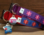 Service Dog  - Collar and ID Tag